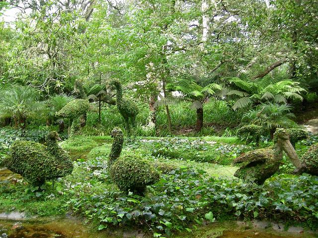imagens jardins orientais ? Doitri.com